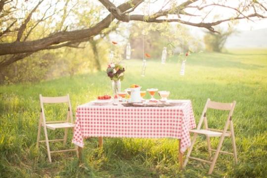 picnicspring1