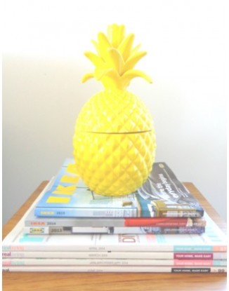 pineapplewoontrend2